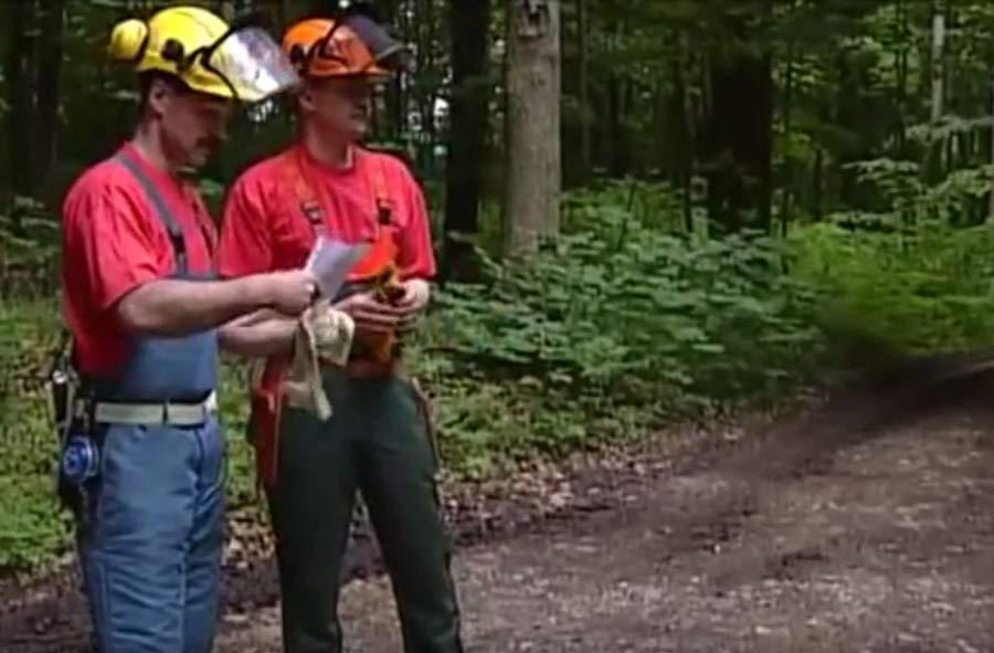Forstwart-Vorarbeiter/in (BP) – Kurzfilm